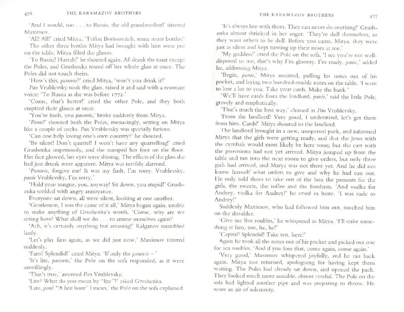 Иллюстрация 1 из 8 для The Karamazov Brothers - Fyodor Dostoevsky | Лабиринт - книги. Источник: Лабиринт
