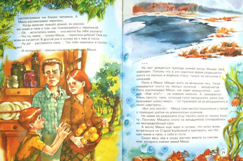 Иллюстрация 1 из 7 для Сказки старой черепахи - Валерий Кастрючин   Лабиринт - книги. Источник: Лабиринт