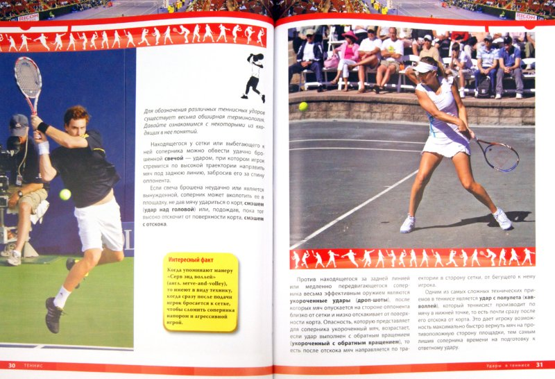 Иллюстрация 1 из 8 для Теннис | Лабиринт - книги. Источник: Лабиринт