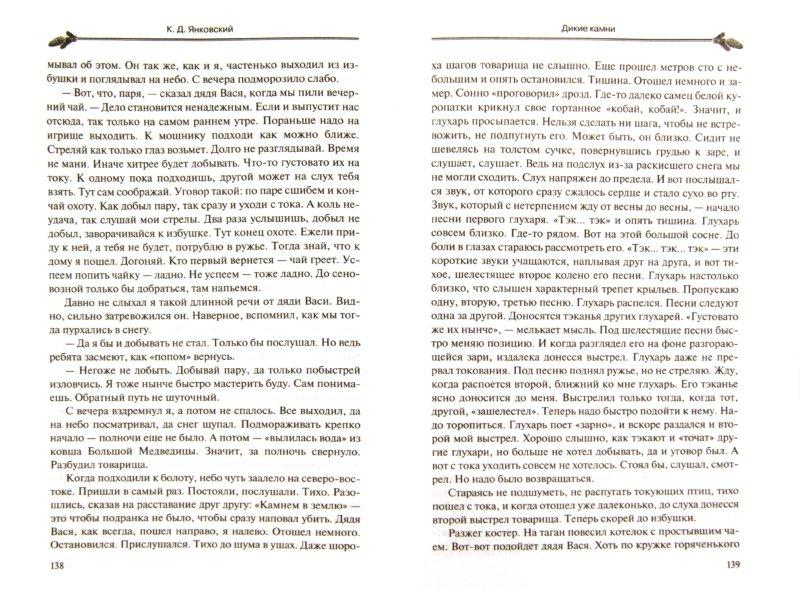 Иллюстрация 1 из 13 для Дикие камни - Константин Янковский   Лабиринт - книги. Источник: Лабиринт