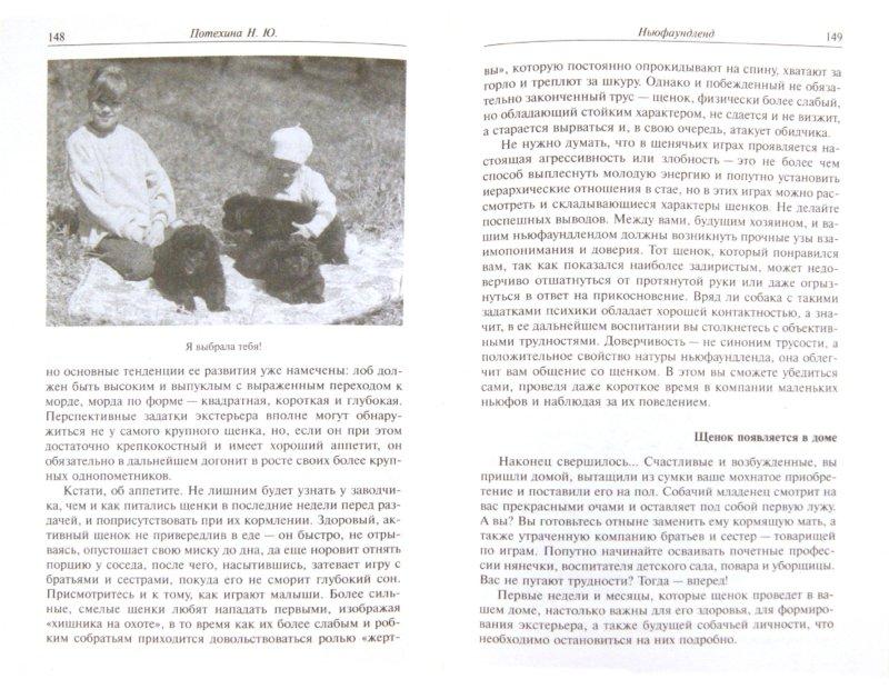 Иллюстрация 1 из 11 для Ньюфаундленд. Стандарт. Содержание. Разведение. Дрессировка - Наталья Потехина   Лабиринт - книги. Источник: Лабиринт