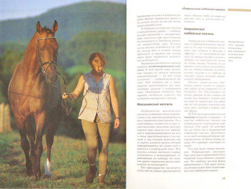 Иллюстрация 1 из 13 для Снаряжение для лошадей и пони. Седла. Уздечки. Удила - Боррис Фон | Лабиринт - книги. Источник: Лабиринт