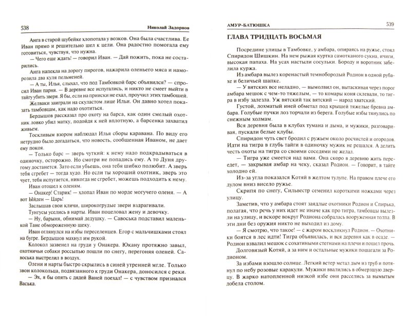 Иллюстрация 1 из 8 для Амур-батюшка. Золотая лихорадка - Николай Задорнов | Лабиринт - книги. Источник: Лабиринт