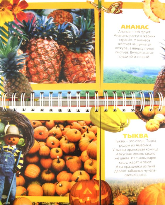 Иллюстрация 1 из 4 для Овощи и фрукты | Лабиринт - книги. Источник: Лабиринт