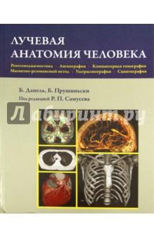 Лучевая анатомия человекаАнатомия и физиология<br>Книга является руководством, посвященным анатомическим основам интерпретации результатов исследований методами визуализации.<br>Основная часть книги состоит из шести разделов, в которых поочередно представлена лучевая анатомия головы, шеи, органов грудной клетки, живота и малого таза, нижней и верхней конечностей и всего тела. Каждый раздел состоит из трех частей: методические указания, содержащие информацию о рациональном использовании различных методов визуализации; анатомические изображения - подробный атлас анатомии, полученный с помощью конвенциональной рентгенодиагностики, ангиографии, компьютерной томографии, магнитно-резонансного метода, ультрасонографии и сцинтиграфии; биометрические показатели и точки ориентации, используемые для оценки результатов исследований.<br>Все названия анатомических структур приведены в соответствии с новой Международной анатомической терминологией.<br>Данное руководство адресовано врачам, проходящим специализацию в области радиологии и диагностической визуализации. Оно также будет полезно студентам всех факультетов медицинских вузов и средних медицинских учебных заведений.<br>