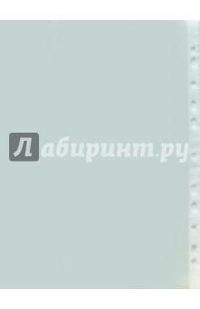 Файл-вкладыш с перфорацией, А4, (штучно) (200540-36)