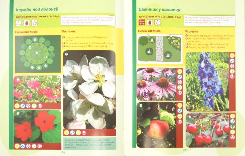 Иллюстрация 1 из 7 для Все о планировке сада на 6 сотках - Анастасия Красичкова | Лабиринт - книги. Источник: Лабиринт