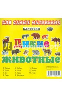 Дикие животные России. Карточки для самых маленьких