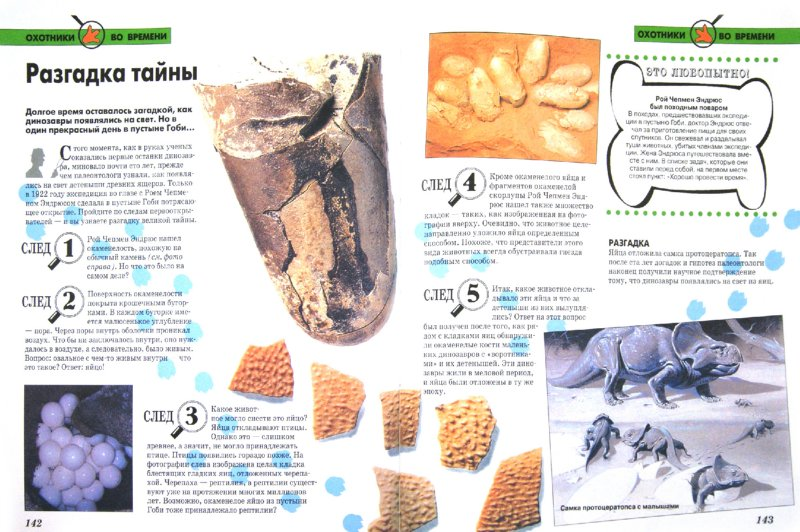 Иллюстрация 1 из 12 для Динозавры | Лабиринт - книги. Источник: Лабиринт