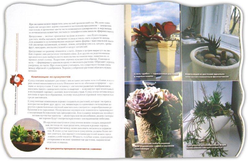 Иллюстрация 1 из 15 для Цветочный сад в квартире и доме за пять минут - Наталья Власова | Лабиринт - книги. Источник: Лабиринт