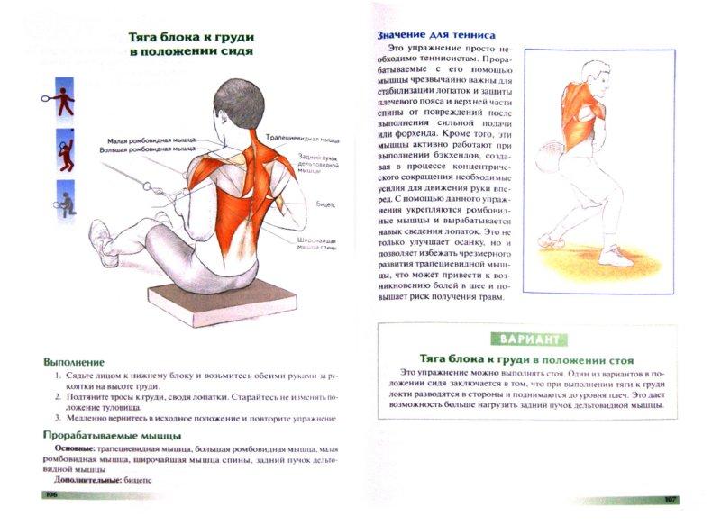 Иллюстрация 1 из 9 для Анатомия тенниса - Роутер, Ковач | Лабиринт - книги. Источник: Лабиринт