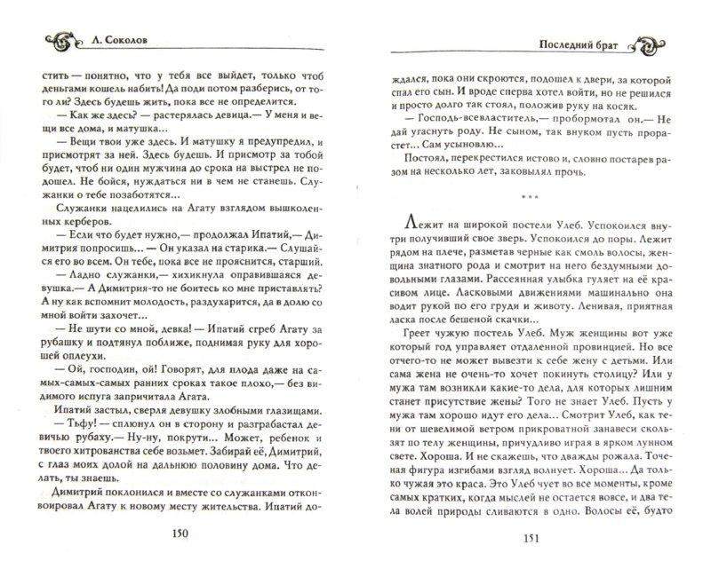 Иллюстрация 1 из 5 для Последний брат - Лев Соколов   Лабиринт - книги. Источник: Лабиринт