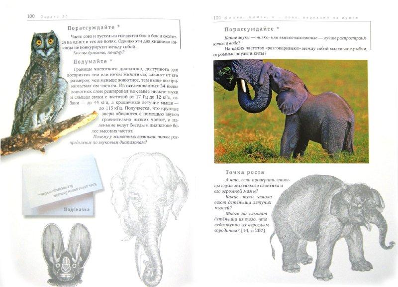 Иллюстрация 1 из 21 для Хищники нападают. Книга 2 - Гин, Андржеевская   Лабиринт - книги. Источник: Лабиринт