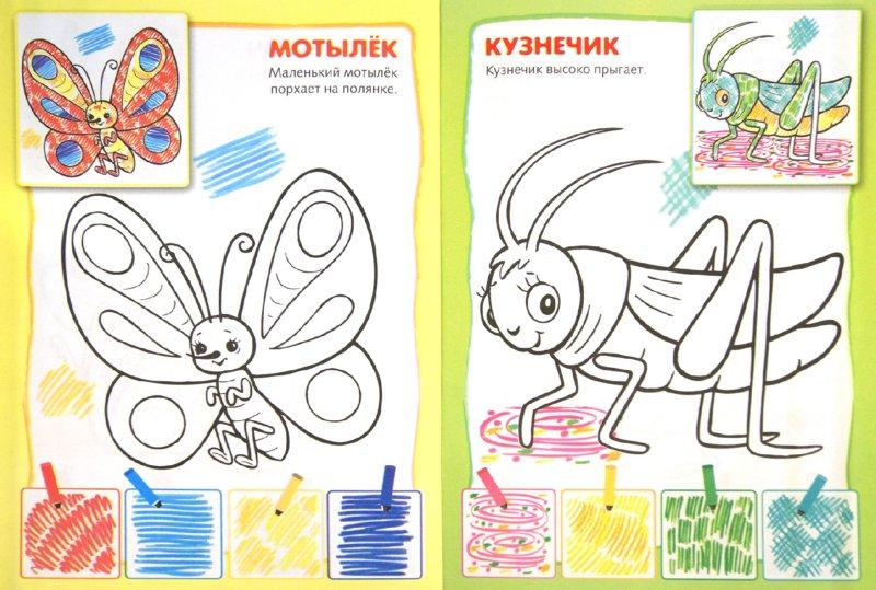 Картинки раскраски фломастерами