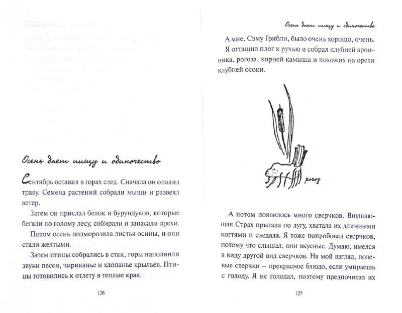 Иллюстрация 1 из 12 для Моя сторона горы - Джин Джордж | Лабиринт - книги. Источник: Лабиринт