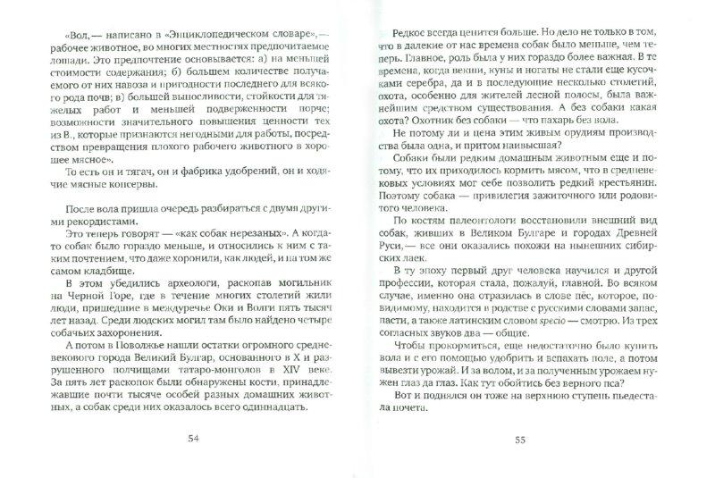 Иллюстрация 1 из 15 для Приключения словес. Лингвистические фантазии - Валентин Рич | Лабиринт - книги. Источник: Лабиринт