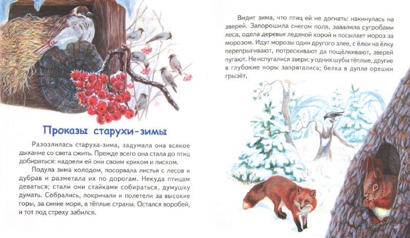 Иллюстрация 1 из 8 для Утренние лучи - Константин Ушинский | Лабиринт - книги. Источник: Лабиринт