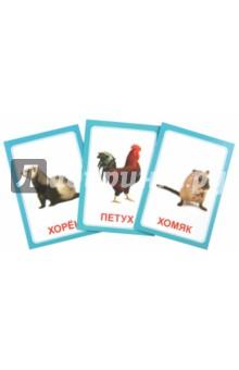 Логопедические карточки Логопедка Щ+ХРазвитие речи, логопедия для дошкольников<br>Комплект карточек Логопедка Щ+Х (30 штук) дает отличную возможность вашему малышу выучить произношение букв и звуков Щ и Х в игровой форме. Эта обучающая игра укомплектована 30-ю двухсторонними карточками, изготовленными из качественного толстого картона. На одной стороне красочный красивый рисунок, относящийся к слову с одним из звуков, а на обороте интересная поговорка. Это поможет крохе пополнить свои знания новыми словами и улучшить дикцию. <br>В наборе присутствуют такие картинки и слова как: щенок, лещ, щит, щавель, щегол, щука, ящерица, ящик, щебень, щётка, щепки, клещ, борщ, плащ, ущелье, роща, овощи, клещи, прищепка, черепаха, хомяк, хорёк, хлеб, хурма, петух, пароход, орех, муха, лопух, горох. Это огромное количество красочных картинок, конечно же, заинтересует ребенка, и он с радостью будет играть с ними.<br>Характеристики:<br>Материал: высококачественный картон.<br>Размер карточки: 7х10 см.<br>Для детей 3-8 лет.<br>Инструкция прилагается.<br>
