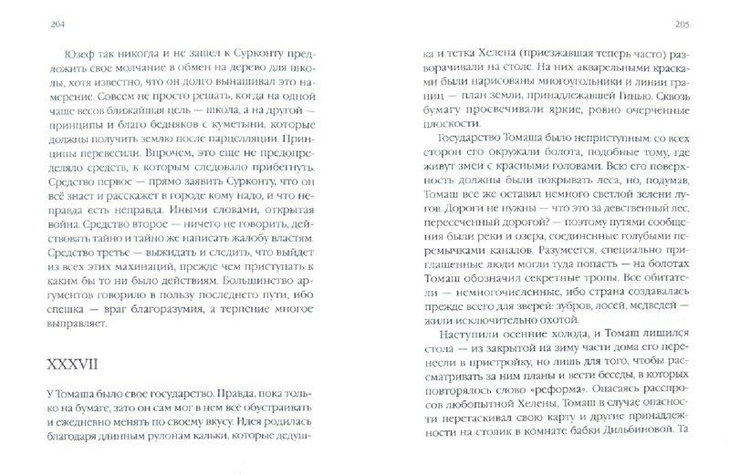 Иллюстрация 1 из 27 для Долина Иссы - Чеслав Милош | Лабиринт - книги. Источник: Лабиринт