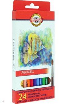 """Карандаши цветные, 24 цвета """"Рыбки"""" (акварель) (3718)"""