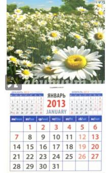 "Календарь 2013 ""Ромашки"" (20318)"