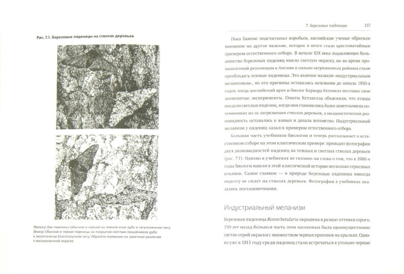 Иллюстрация 1 из 12 для Анти-Дарвин - Джонатан Уэллс | Лабиринт - книги. Источник: Лабиринт