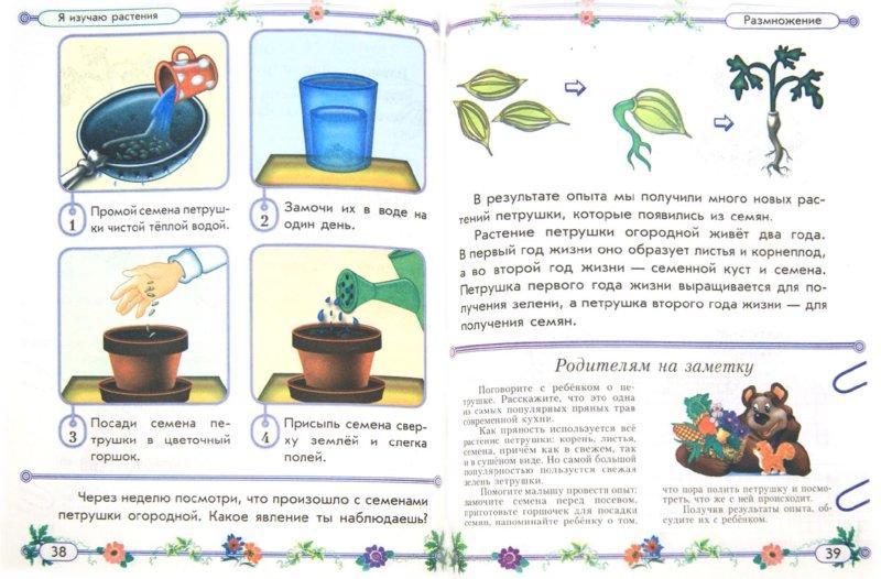 Иллюстрация 1 из 5 для Секреты живой природы. Увлекательные опыты по биологии для детей, их родителей и воспитателей - Ольга Таглина | Лабиринт - книги. Источник: Лабиринт