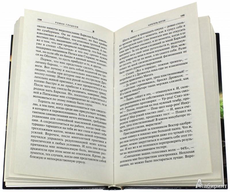 Иллюстрация 1 из 6 для Каратель богов - Роман Глушков | Лабиринт - книги. Источник: Лабиринт