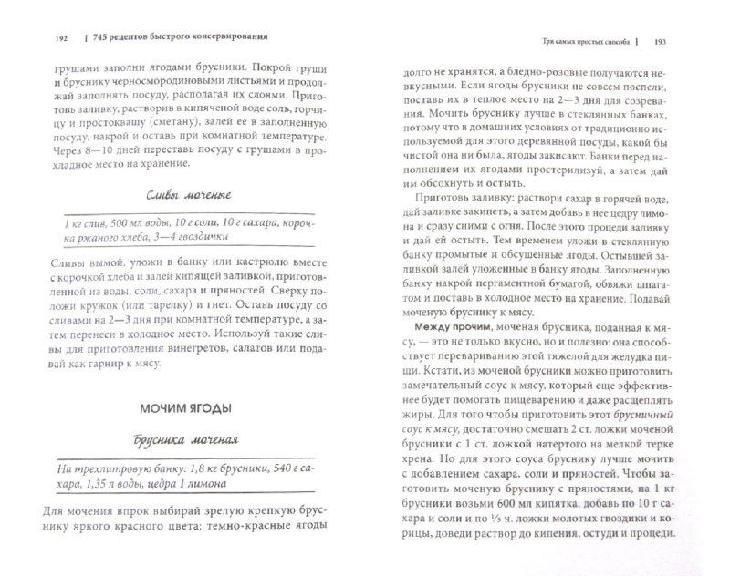 Иллюстрация 1 из 6 для 745 рецептов быстрого и легкого консервирования - Ирина Сокол | Лабиринт - книги. Источник: Лабиринт