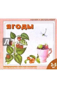 Ягоды: Раскраска для детей 3 - 5 лет