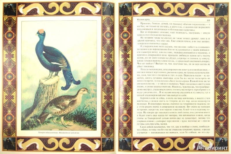 Иллюстрация 1 из 25 для Русская охота | Лабиринт - книги. Источник: Лабиринт