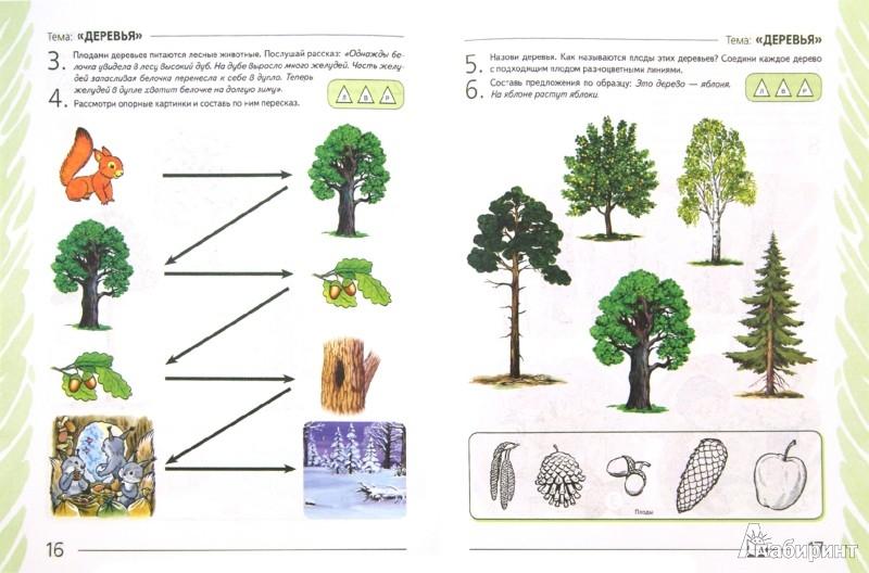 Иллюстрация 1 из 8 для Развиваем связную речь у детей 4-5 лет с ОНР. Альбом 1. Мир растений - Нелли Арбекова | Лабиринт - книги. Источник: Лабиринт