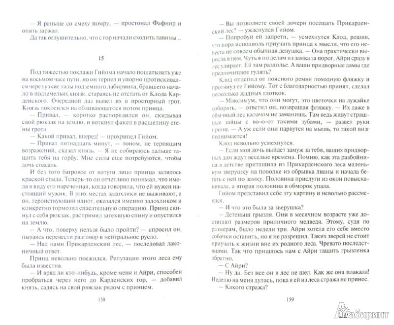 Иллюстрация 1 из 2 для Подкидыш - Шелонин, Шелонина   Лабиринт - книги. Источник: Лабиринт