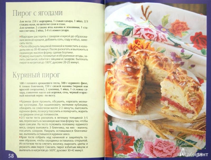 Иллюстрация 1 из 16 для Кулинарная книга дачника | Лабиринт - книги. Источник: Лабиринт