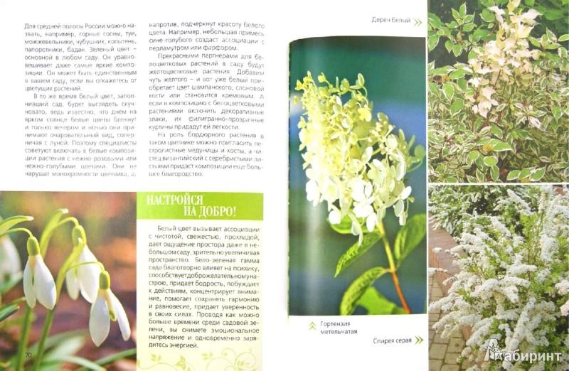 Иллюстрация 1 из 9 для Сад одного цвета   Лабиринт - книги. Источник: Лабиринт