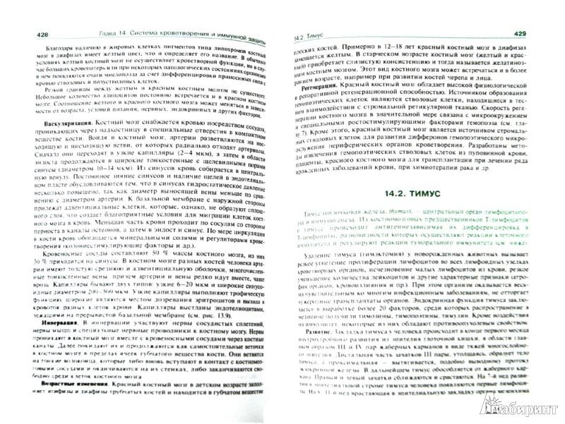 Иллюстрация 1 из 29 для Гистология, эмбриология, цитология. Учебник - Афанасьев, Юрина, Алешин | Лабиринт - книги. Источник: Лабиринт