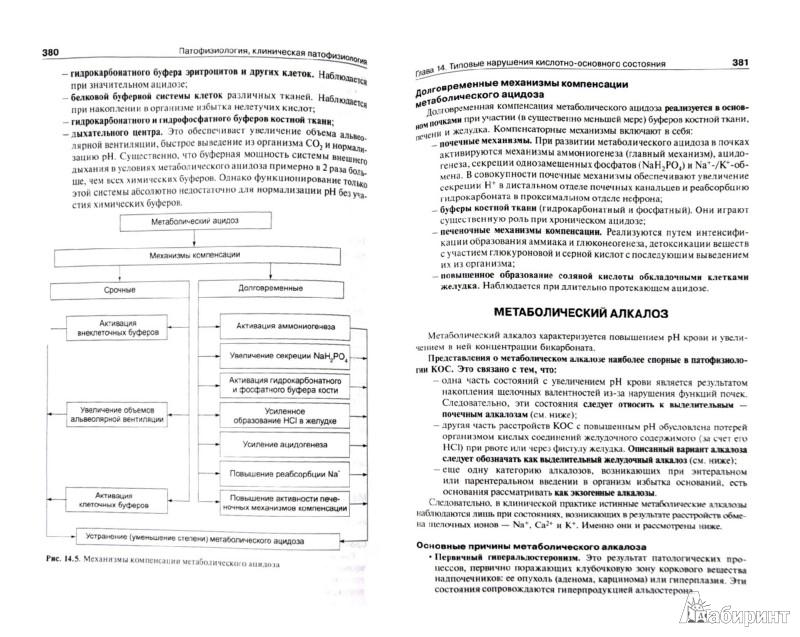 Иллюстрация 1 из 18 для Патофизиология: учебник. В 2-х томах. Том 1 - Петр Литвицкий | Лабиринт - книги. Источник: Лабиринт