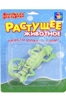 Домашний инкубатор. Ящерицы, ассортимент (Т53561)