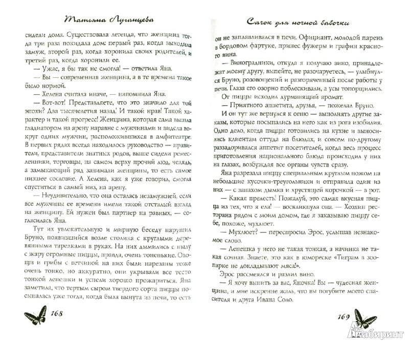 Иллюстрация 1 из 16 для Сачок для ночной бабочки - Татьяна Луганцева | Лабиринт - книги. Источник: Лабиринт
