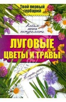 Луговые цветы и травы