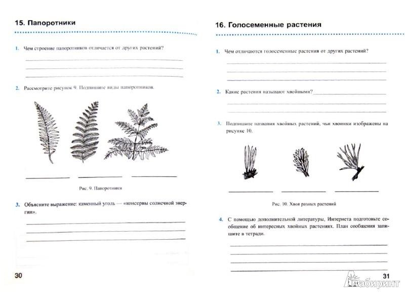 К биология 5 класс рабочая тетрадь