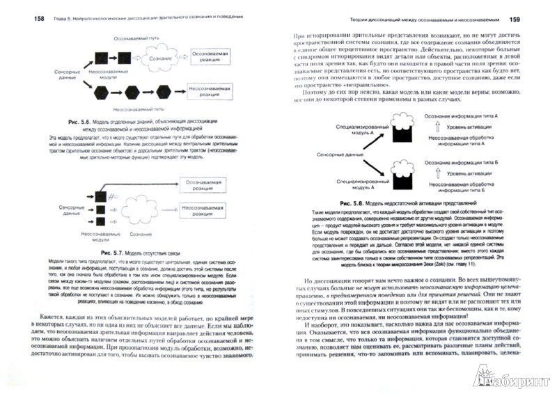 Иллюстрация 1 из 17 для Психология сознания - Антти Ревонсуо | Лабиринт - книги. Источник: Лабиринт
