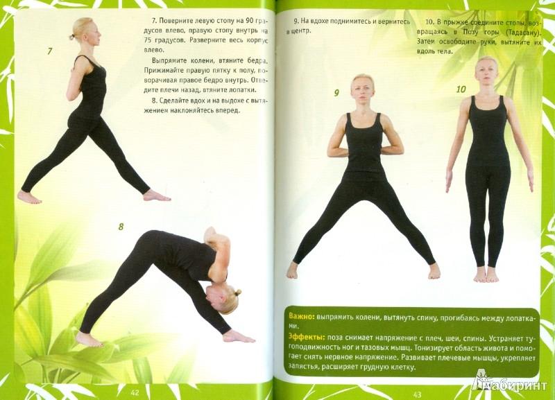Иллюстрация 1 из 14 для Йога. Полный курс для начинающих. 55 лучших асан разного уровня сложности - Ирина Шевцова | Лабиринт - книги. Источник: Лабиринт