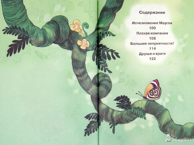 Иллюстрация 1 из 25 для Книга джунглей - Редьярд Киплинг | Лабиринт - книги. Источник: Лабиринт