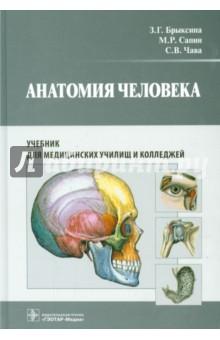 Анатомия человека. Учебник для педагогических вузов