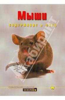 Мыши. Содержание и уход