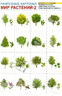 Мир растений-2. Комплект разрезных карточек