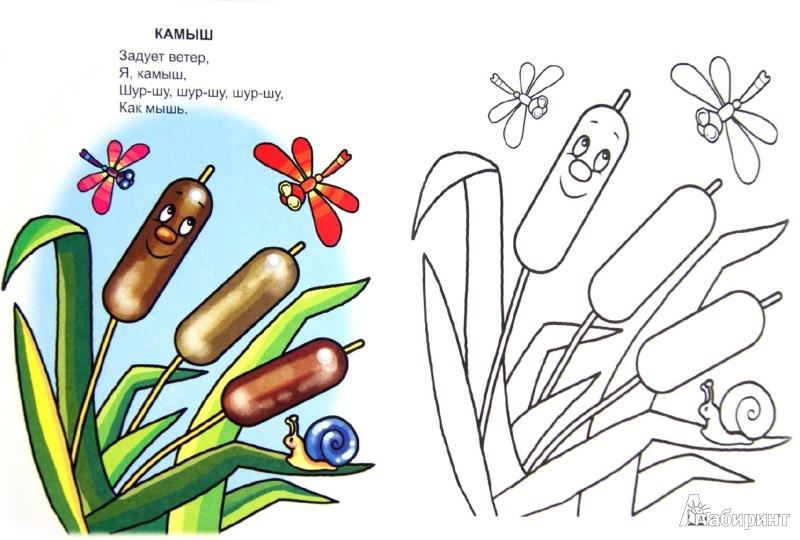Иллюстрация 1 из 14 для Как звучит мир - Владимир Борисов | Лабиринт - книги. Источник: Лабиринт