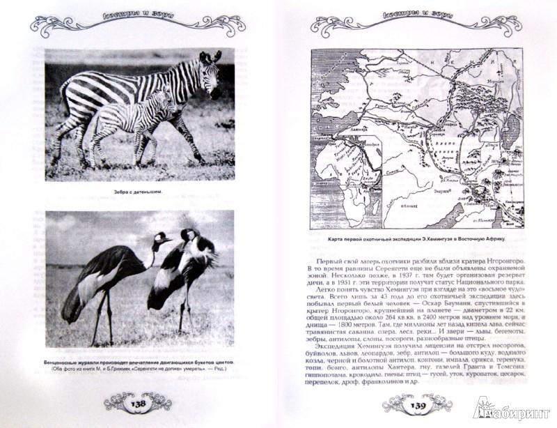 Иллюстрация 1 из 4 для Охотничьи просторы. Книга вторая (36), 2003 г. | Лабиринт - книги. Источник: Лабиринт