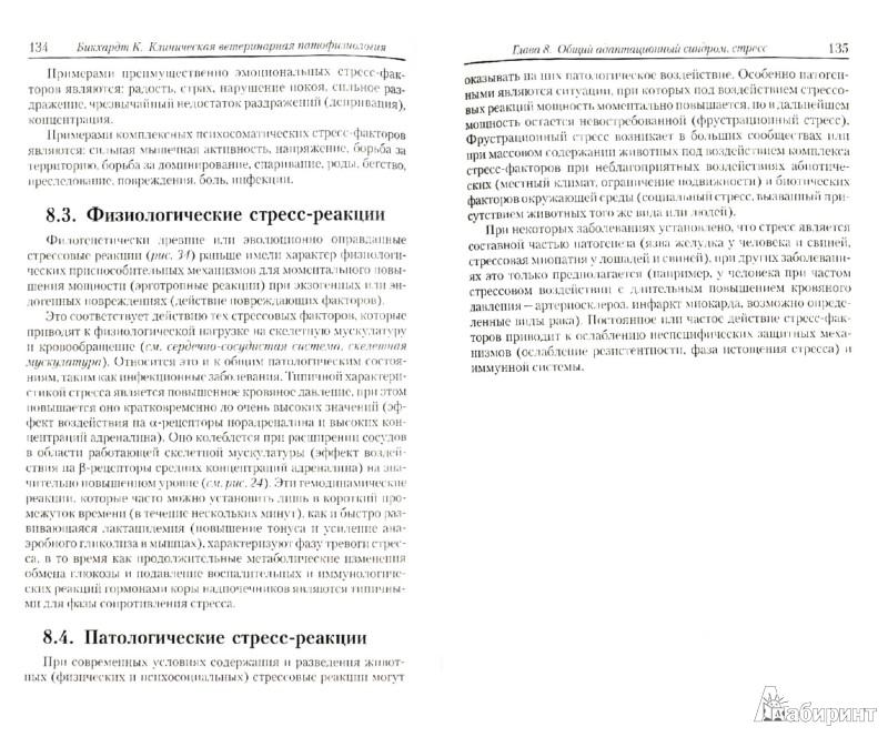 Иллюстрация 1 из 3 для Клиническая ветеринарная патофизиология - Клаус Бикхардт | Лабиринт - книги. Источник: Лабиринт